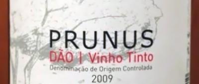 Prunus Dao 2009 Tesco wino za 20 zł