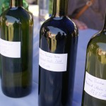 Święto Wina 2012 w Janowcu nad Wisłą Winnica Pańska Góra