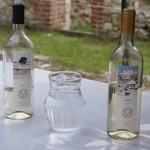 Święto Wina 2012 w Janowcu nad Wisłą Winnica Słowicza