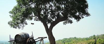 Red Mountain Winery Burma Birma