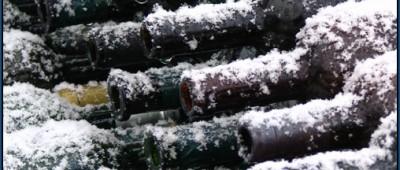 chłodzenie wina