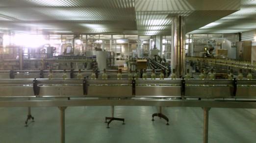 Quinta da Aveleda bottling line