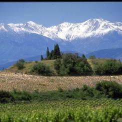 Masyw Canigou, Pireneje.