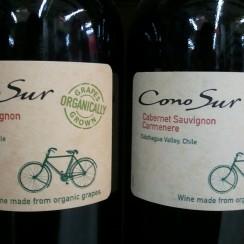 Rowerem przez winnice.