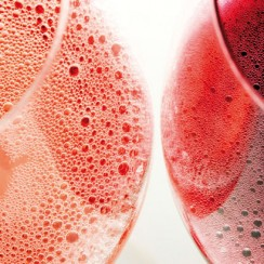 different Lambrusco wine colours