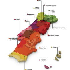 bairrada_mapa_wines_of_portugal
