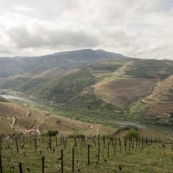 Ze szczytu góry widać prawie całe Douro. © Kamil Skwarski.