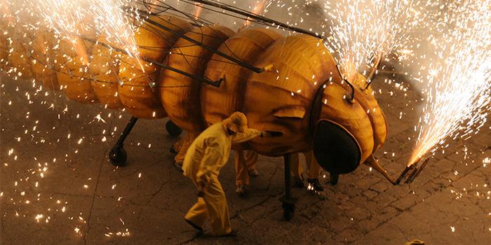 Coroczna Fiesta de la Filoxera. © Barcelonaesmoltmes.cat