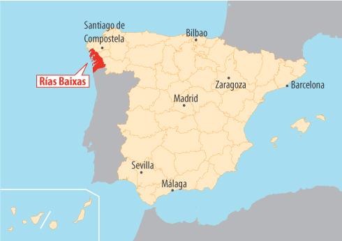 Rias Baixas, królestwo albarino. © Libelium.com