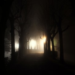 Vernaccia we mgle. © Izabela Kamińska