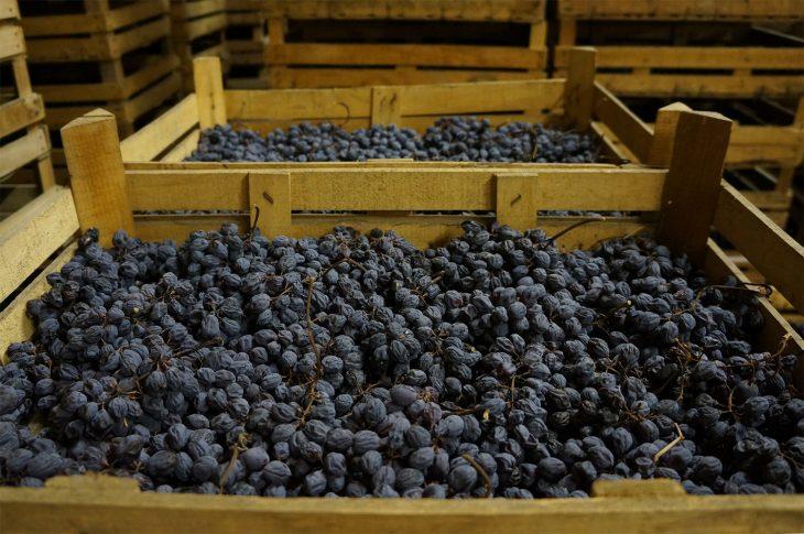 Ciii, tu suszą się winogrona. ©winefolly.com