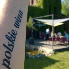 Polskie wina w Poznaniu? Tylko w SPOT. © Maciej Nowicki.