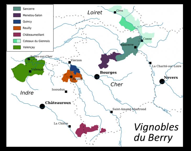Loarskie winnice w Berry w środkowej Francji – kolebka Sauvignon Blanc.