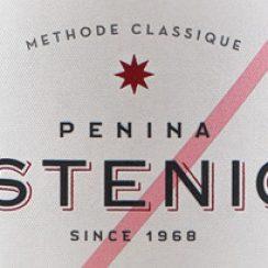 istenic-logo